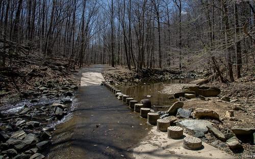 park nature water virginia nikon trail va d750 traveling mclean scottsrunnaturepreserve dranesvilledistrictpark