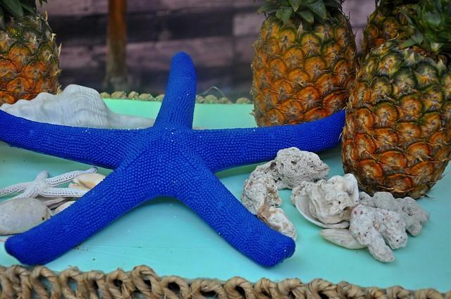 Starfishy