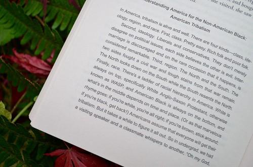 p. 184 - Americanah