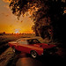1969 Dodge Superbee (2015) by THE PIXELEYE // Dirk Behlau
