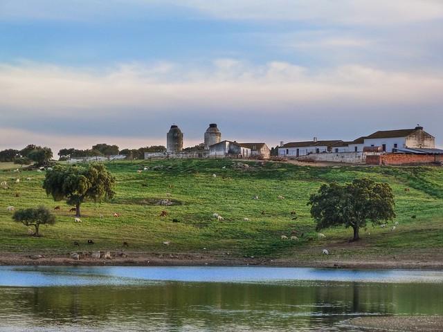 Paisaje del Lago Alqueva (Alentejo, Portugal)