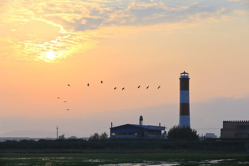 lighthouse sunrise canon taichung wetland 台中 6d 日出 清水 高美 gaomei 燈塔
