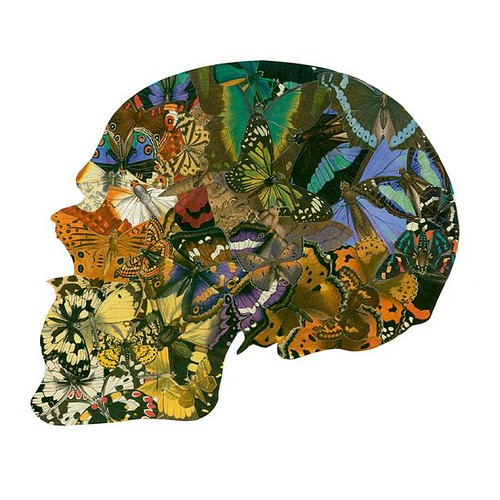 Skull Collage by Burry Buermans