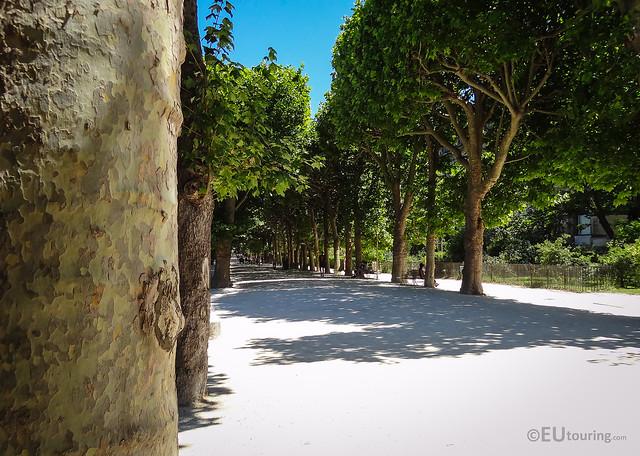 Allee hauy in jardin des plantes flickr photo sharing for Allee de jardin
