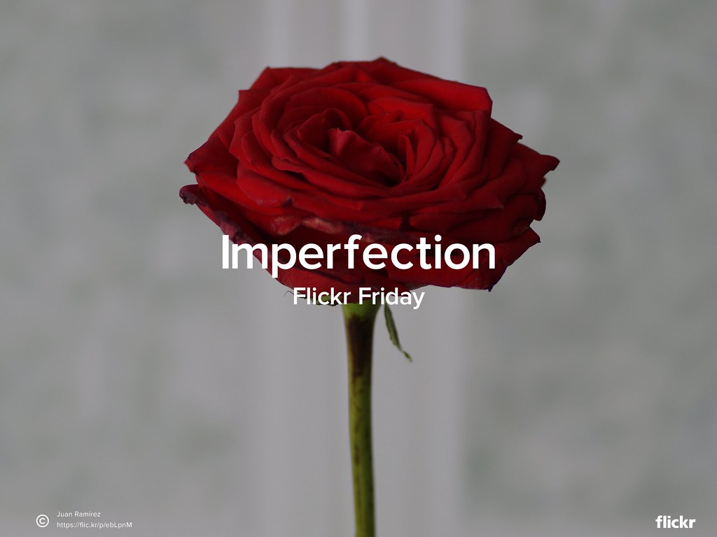 #FlickrFriday - Imperfection