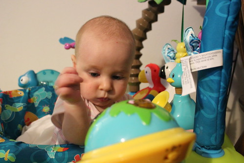 First Time Touching the Exersaucer