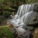 Weeping Rock, Leura