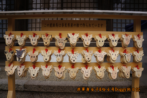 日本奈良春日大社09