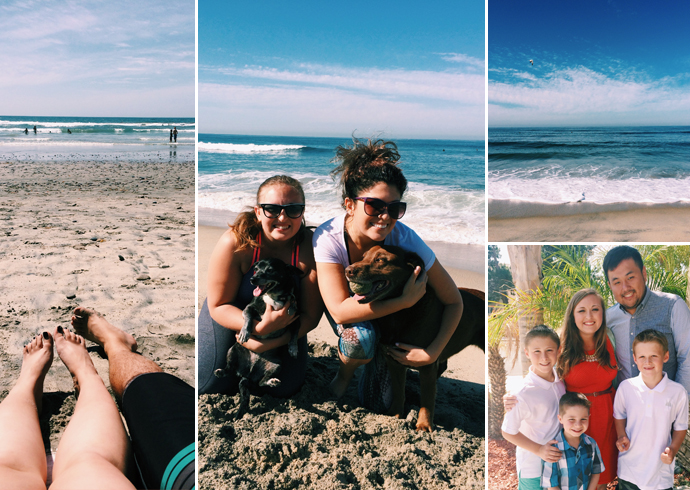 adventure, san diego, family, beach, road trip, dogs,