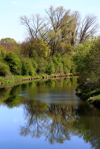 blue reflection green primavera water colors river landscape spring wasser colours frankfurt natur grün blau fluss spiegelung printemps frühling 6d nidda 2015 riverscape anymotion bonames flusslandschaft landschaftsaufnahmen canoneos6d