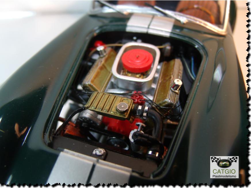 Shelby Cobra S/C - Revell - 01/24 - Finalizado 24/04 - Página 2 17251005705_4eb91d01c7_o