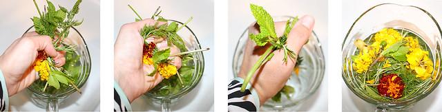 Refreshing Herbal Beverage Kit