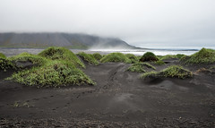 Black sand beach in Stokksnes