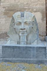 Head of Statue of Amenhotep III