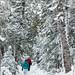 Sentier autour du Gite du Mont Albert