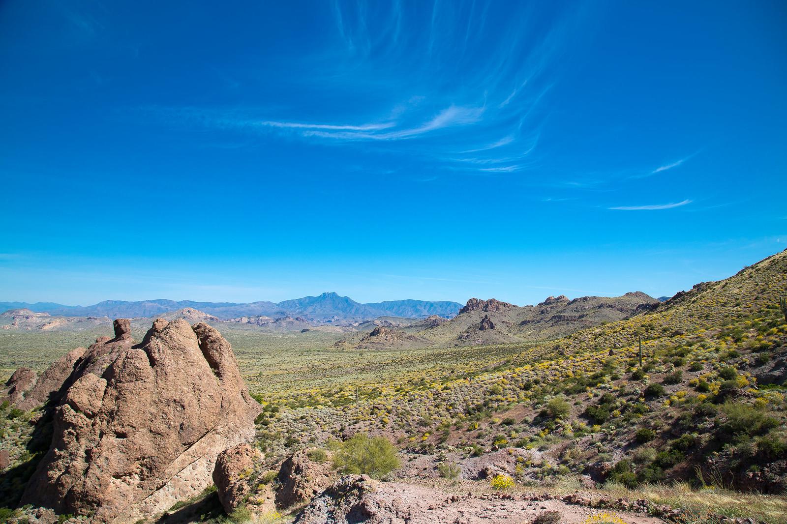 2015-03-12 Arizona-6428.jpg