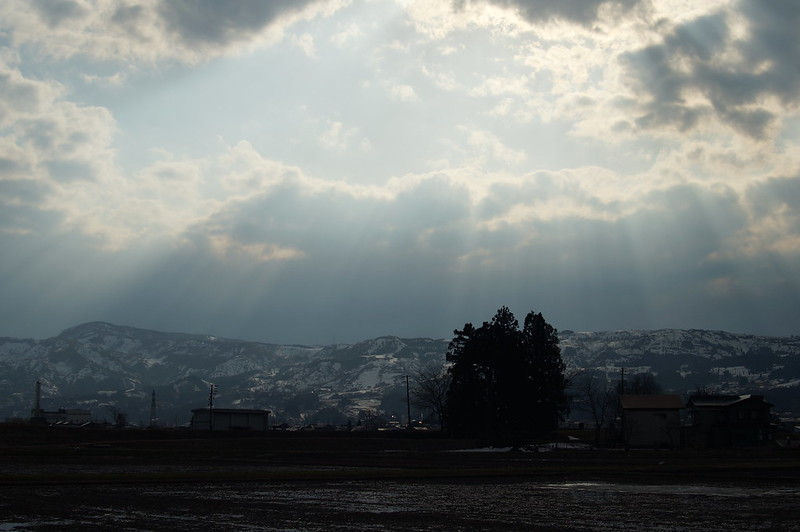 光と影_201504_NO2