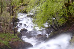 Agua-Eau