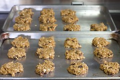 baking, oatmeal-raisin cookies, baked goods, cookies and crackers, food, cookie, snack food,