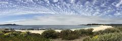 Panorama/Carmel River Beach/iphoneography
