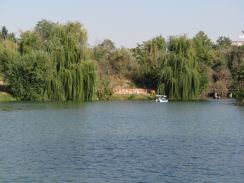 lake arboretum willow kazakhstan pedalo shymkent chimkent казахстан дендропарк шымкент чимкент steppetales