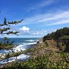 Shore Acres State Park Wildlife Preserve. #oregon #pnw #coast #ocean #natureistheshit
