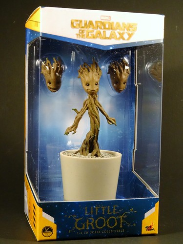 LIttle Groot box front