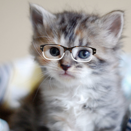 Darling_glasses_7