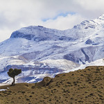 Atlasgebirge
