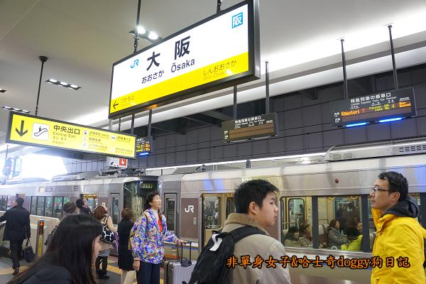 日本JR地鐵電車便當14