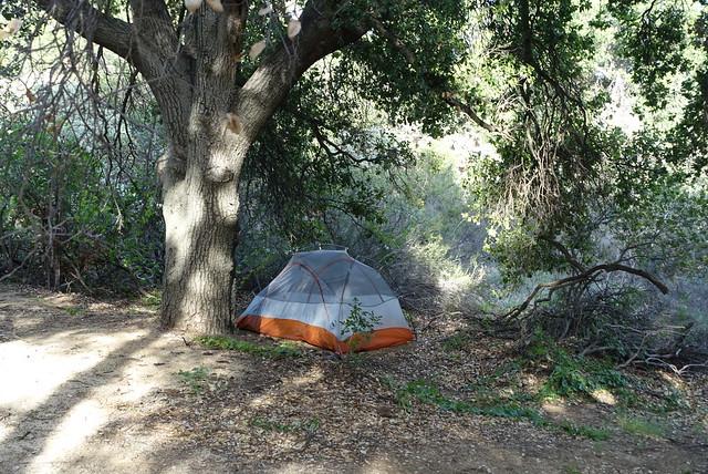 Campsite, m478+