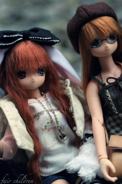Pet Expo - Azone 2