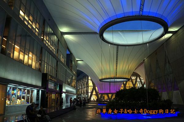 高雄大東文化藝術中心22