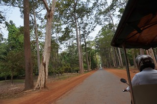 The road leading to Angkor Wat was unusually undeveloped