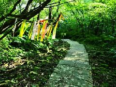 五分山步道海,登山社的布條有如「招魂旗」。圖片來源:台灣千里步道協會