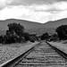 Via de tren por marthahari