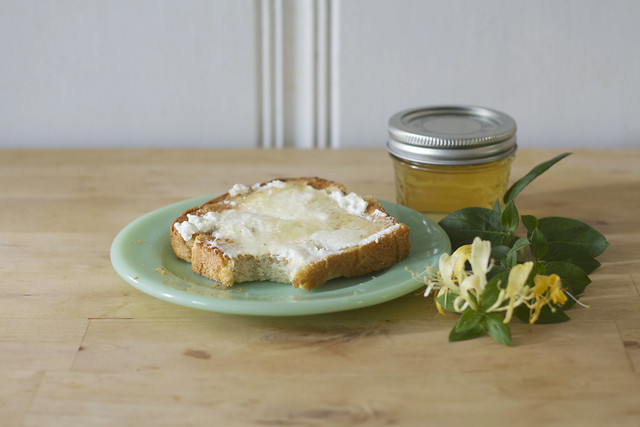 honeysuckle jelly on toast with ricotta