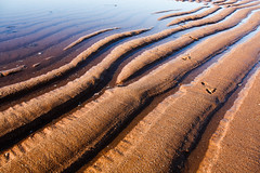 tidal pattern 1
