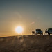 Desert Safari in Dubai by snoopsmaus