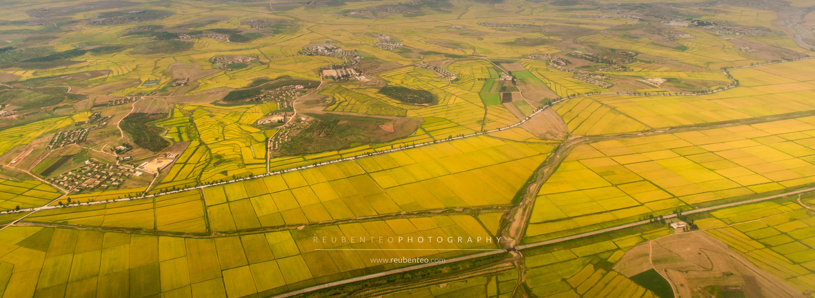 Aerial view of Pyongyang Farm