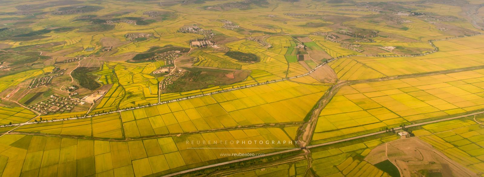 Aerial view of Pyongyang Farm