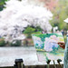 Sakura Painter in the Park