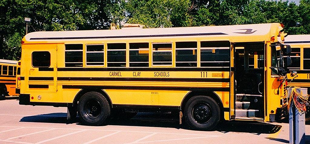 Blue Bird Bus >> Georgia Blue Bird's most recent Flickr photos   Picssr