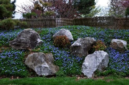 park flowers rocks landscaping parks boulders springfieldmissouri springfieldmo 2015 bigrocks japanesestrollgarden mizumotojapanesestrollgarden