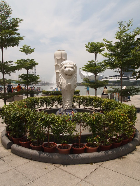 P4189261 Merlion park マーライオン シンガポール