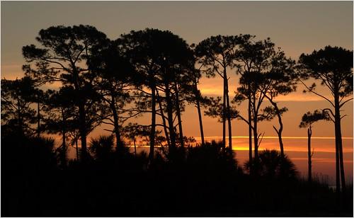sunrise fortwaltonbeach okaloosaisland