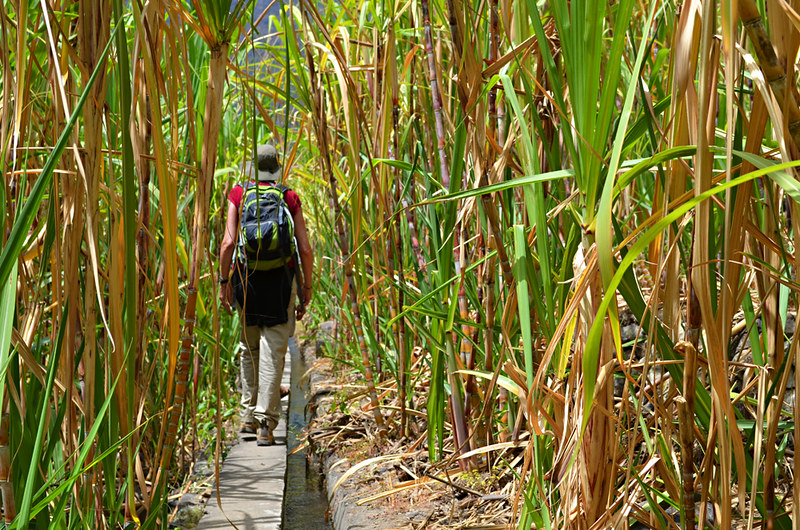 Walking in Ribeira do Paul Valley, Santa Antau, Cape Verde