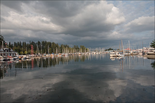 Stanley park in vancouver