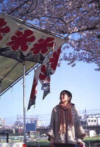 氷x桜x嫁