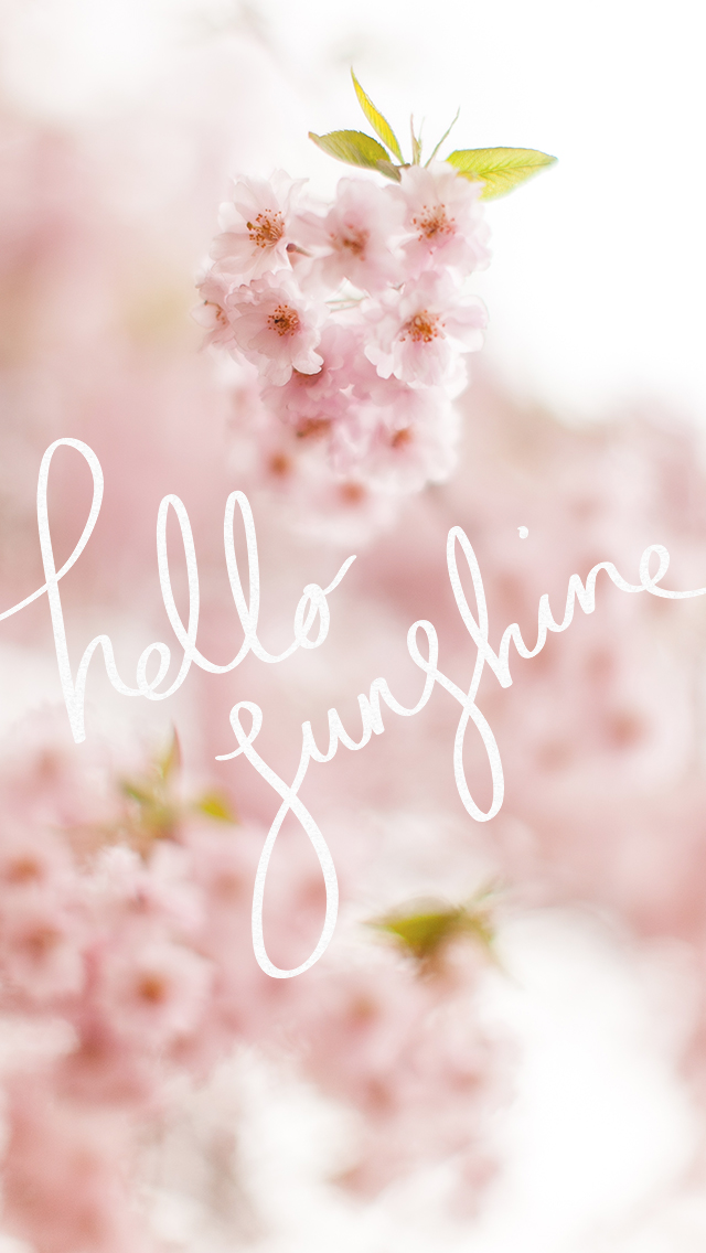 Pink floral blossom Hello sunshine iphone phone wallpaper